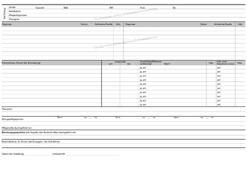 3130 Stammblatt Informationssammlung Informationssammlungen Formulare Manuelle Dokumentation Dan Produkte Pflege Dokumentation Und Pflege Software